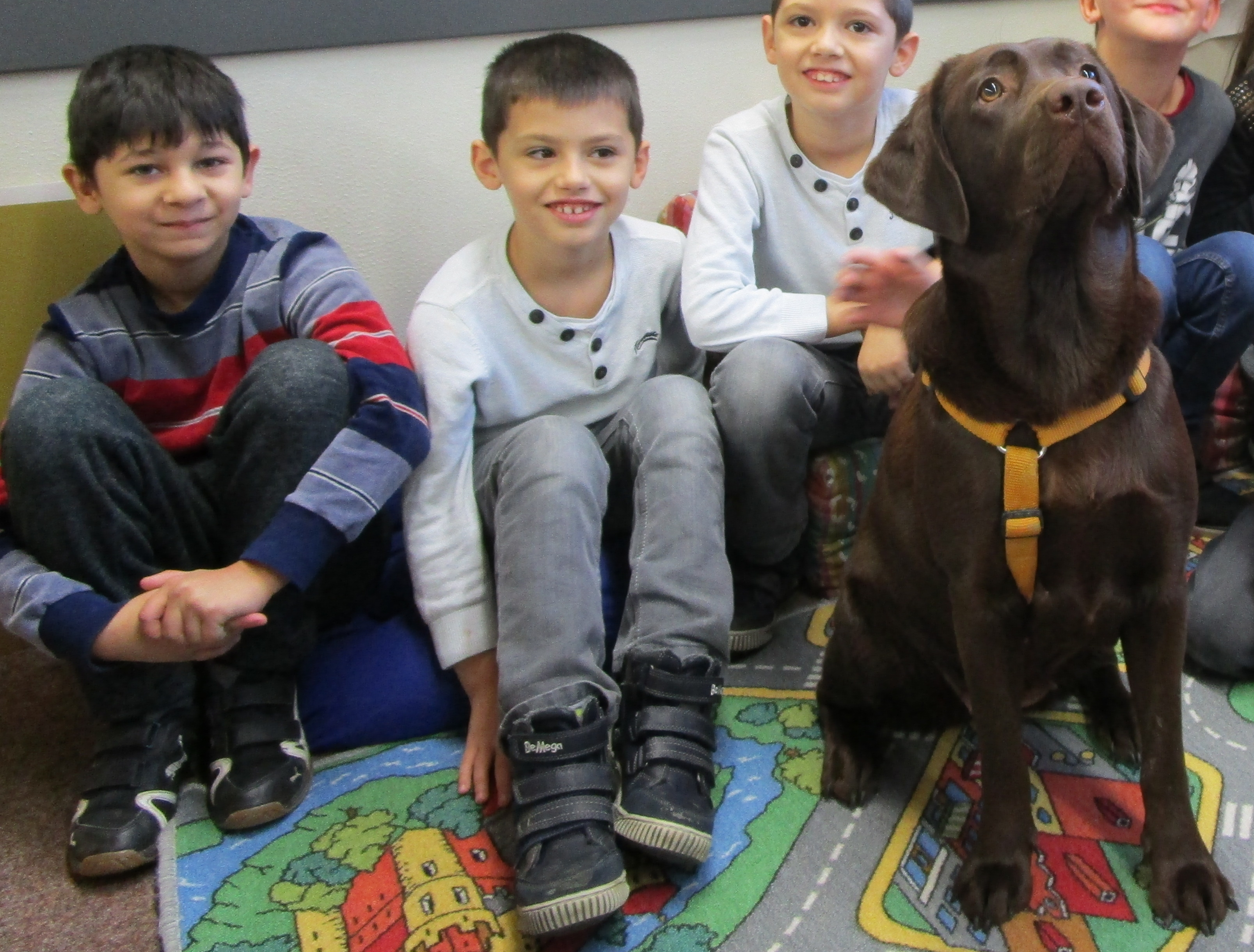 Abbildung von Jungs mit Hund